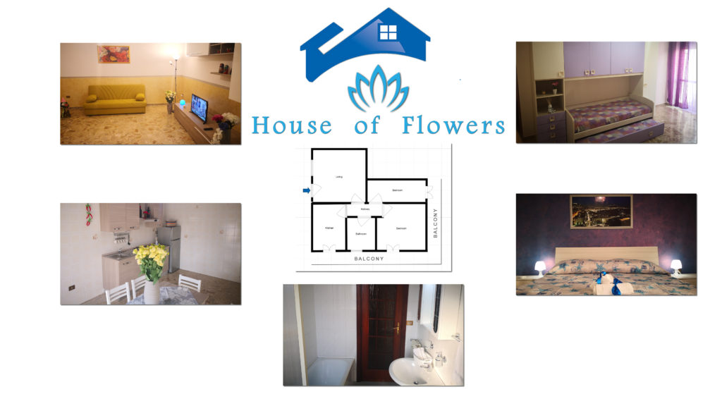 House of Flowers Planimetry